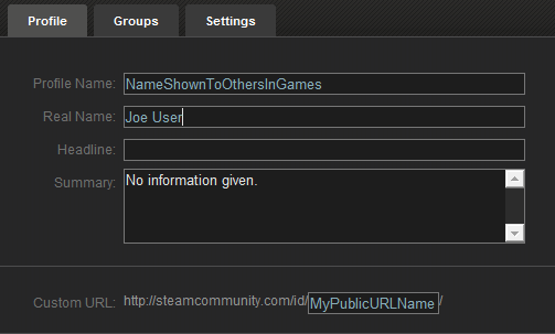 Understanding the various names and user ids used by Steam